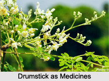 Use of Drumstick as Medicines, Classification of Medicine
