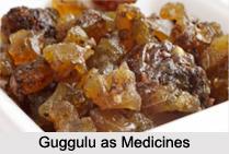 Use of Guggulu as Medicines, Classification of Medicine