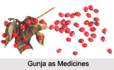 Use of Gunja as Medicines, Classification of Medicine