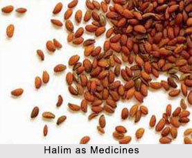 Use of Halim as Medicines, Classification of Medicine