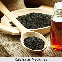 Use of Kalajira as Medicines, Classification of Medicine