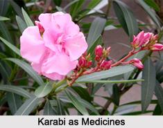 Use of Karabi as Medicines, Classification of Medicine