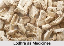 Use of Lodhra as Medicines, Classification of Medicine