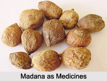 Use of Madana as Medicines, Classification of Medicine