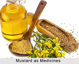Use of Mustard as Medicines, Classification of Medicine