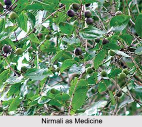 Use of Nirmali as Medicines, Classification of Medicine