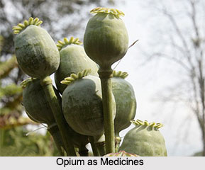 Use of Opium as Medicines, Classification of Medicine