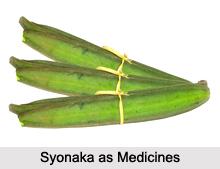 Use of Syonaka as Medicines, Classification of Medicine