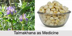 Use of Talmakhana as Medicines, Classification of Medicine