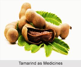 Use of Tamarind as Medicines, Classification of Medicine