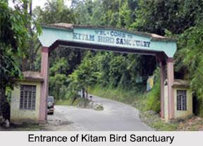 Kitam Bird Sanctuary, South Sikkim district, Sikkim