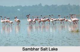 Lakes of Rajasthan