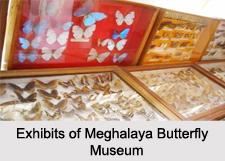 Museums of Meghalaya