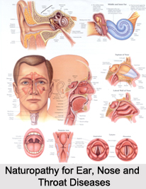 Naturopathy for Ear, Nose and Throat Diseases, Indian Naturopathy