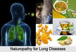 Naturopathy for Lung Diseases, Indian Naturopathy