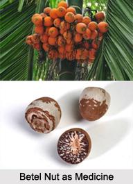 Use of Betel Nut as Medicines, Classification of Medicine