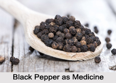 Use of Black Pepper as Medicines, Classification of Medicine