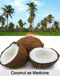 Use of Coconut as Medicines, Classification of Medicine