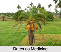 Use of Nutgrass as Medicines, Classification of Medicine