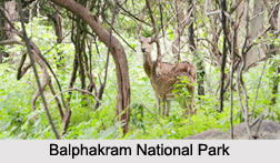 National Parks of Meghalaya