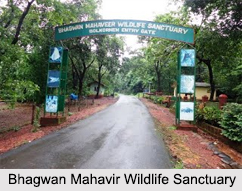 Wildlife Sanctuaries of Goa