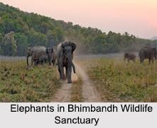 Wildlife Sanctuaries of Bihar