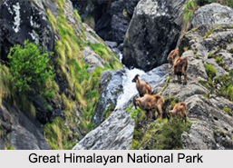 National Parks of Himachal Pradesh