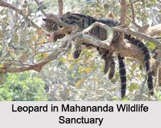 Wildlife Sanctuaries of West Bengal