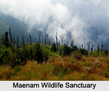 Wildlife Sanctuaries of Sikkim