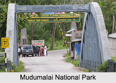National Parks of Tamil Nadu