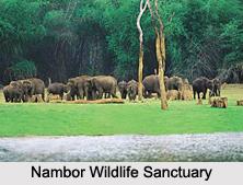 Wildlife Sanctuaries of Assam