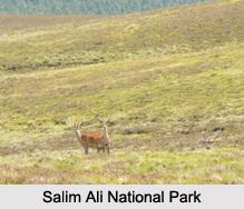National Parks of Jammu and Kashmir