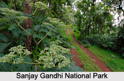 National Parks of Maharashtra