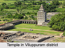 Pre Historic Age of Tamil Nadu