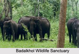 Wildlife Sanctuaries of Chhattisgarh
