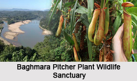 Wildlife Sanctuaries of Meghalaya