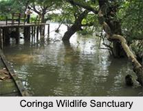 Wildlife Sanctuaries of Andhra Pradesh