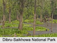 National Parks of Assam