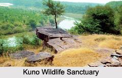 Wildlife Sanctuaries of Central India