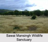 Wildlife Sanctuaries of Rajasthan