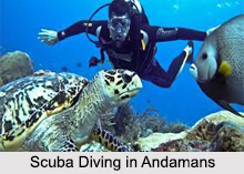 Scuba Diving and Snorkelling in India