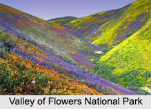 National Parks of Uttarakhand