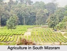 District of South Mizoram