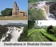 Districts in Shahdol Division, Madhya Pradesh