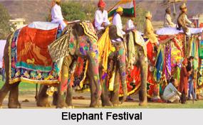 Elephant Festival, Religious Festivals, Rajasthan