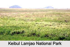 National Park of Manipur