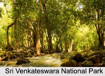 National Parks of Andhra Pradesh