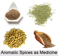 Use of Aromatic Spices as Medicines, Classification of Medicine