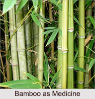Use of Bamboo as Medicines