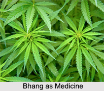 Use of Bhang as Medicines, Classification of Medicine